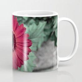 A Full Frontal Closeup of a Red Daisy Coffee Mug