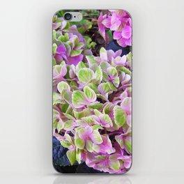 Pink & Green Hydrangea iPhone Skin