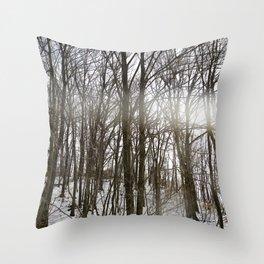 Winter Light: Slippery Rock, Pennsylvania. Throw Pillow