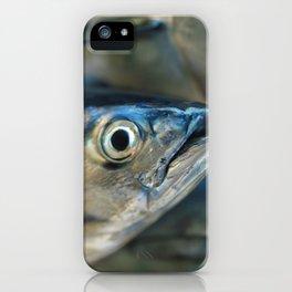 Big eye, tuna, fish, still life, photo, fine art, print, nature, sea, fishing, detail, blue iPhone Case
