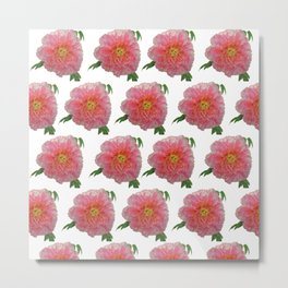 Peony Flower Print for Spring & Summer Metal Print
