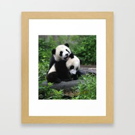 PANDAS PLAYING Framed Art Print