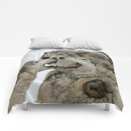 Shouting Match Comforters