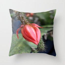 Beautiful Cactus Bud Throw Pillow