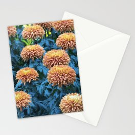 Longwood Gardens Autumn Series 215 Stationery Cards