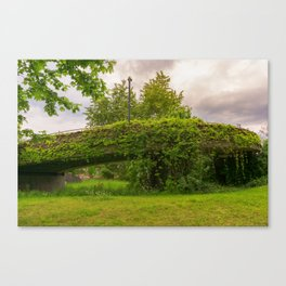 a bridge is covered with leafs and branches Canvas Print
