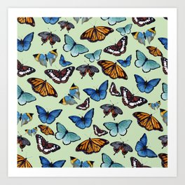 Butterflyes Art Print