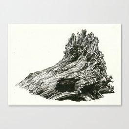 Abrupt Canvas Print
