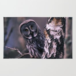 INQUISITIVE GREAT GREY OWL Rug