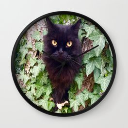 a cat owl, King Pomponio Mela Wall Clock