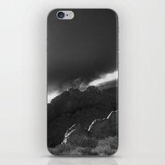 Kissing Camels B&W iPhone & iPod Skin