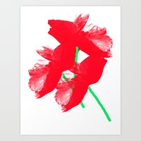 poppies Art Prints featuring Poppies by Vitta