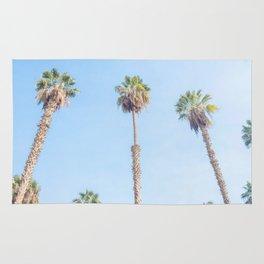 Palm Tree Splendor in Cairo Egypt Rug