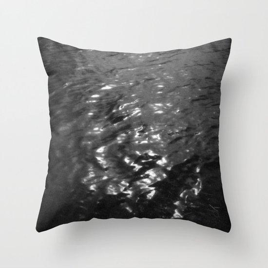 Highwater 1  Throw Pillow