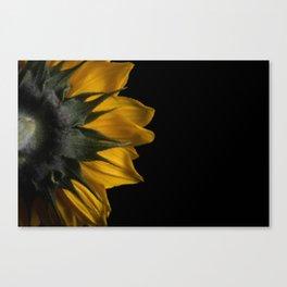 Backside of Sunflower Brush Strokes Digital Artwork Canvas Print