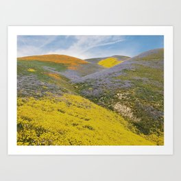 Bloomtown California Art Print