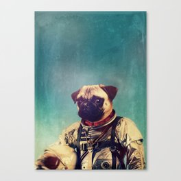A Point To Prove Canvas Print