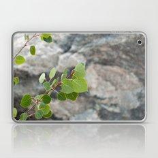 Aspen Leaves Laptop & iPad Skin