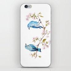 Mountain Bluebirds on Sakura Branch iPhone Skin