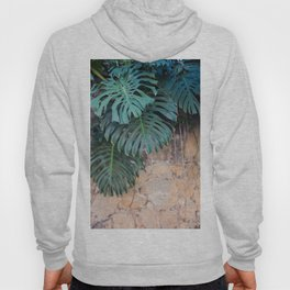 Monstera Print, Tropical Green Beauty Hoody