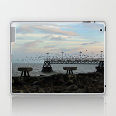 Sudden Flight Laptop & iPad Skin