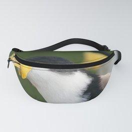 Australian Masked Lapwing Fanny Pack