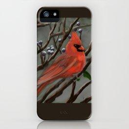 Male Cardinal DP151210a-14 iPhone Case