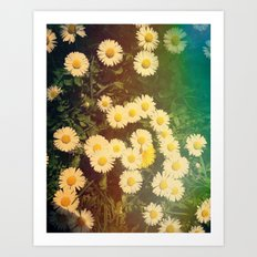 Walking in the Daisies Art Print