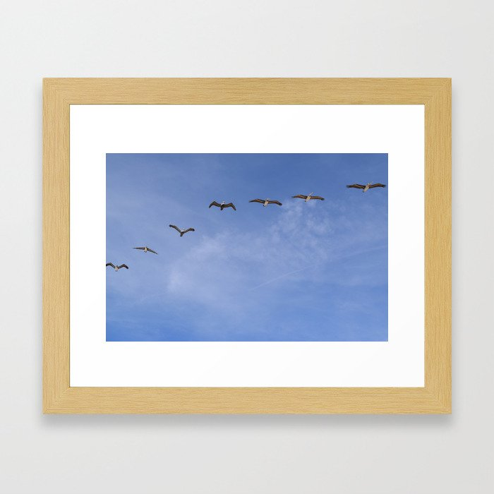 birds sky Framed Art Print