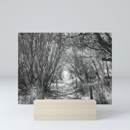 Beach path with trees - black and white Mini Art Print
