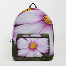 Winter Cosmos Flower in Pink 7 Backpack