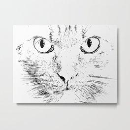 cat looks me in the eyes Metal Print