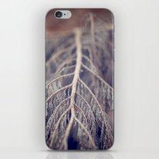 December's Anatomy iPhone & iPod Skin