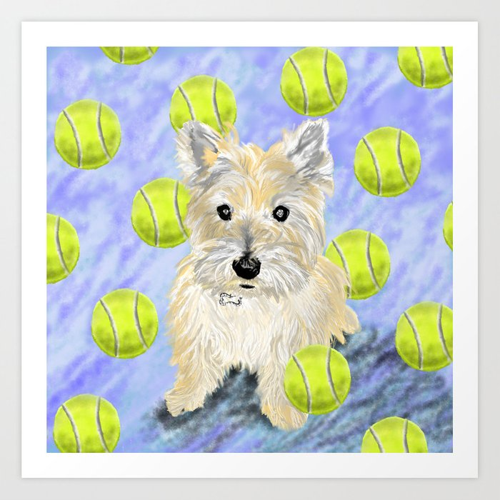 Simple Cairn Terrier Ball Adorable Dog - miss-caroline-the-cairn-terrier-is-obsessed-about-fetching-tennis-balls-pam-prints  Pic_662776  .jpg