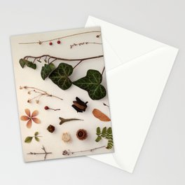 Botanic Party 03 Stationery Cards