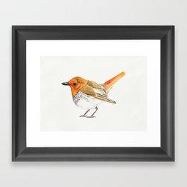 Little Watercolour Robin Framed Art Print