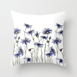 Blue Cornflowers, Illustration Throw Pillow