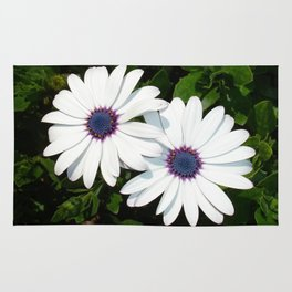 A Pair of White African Daisies Rug