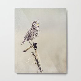 Happy As A Lark Metal Print