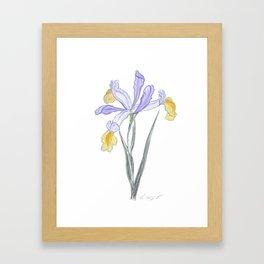 Iris 05 Botanical Flower * Lavender Purple Japanese Iris Framed Art Print
