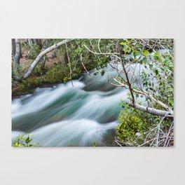 Big Pine Creek Raging Canvas Print
