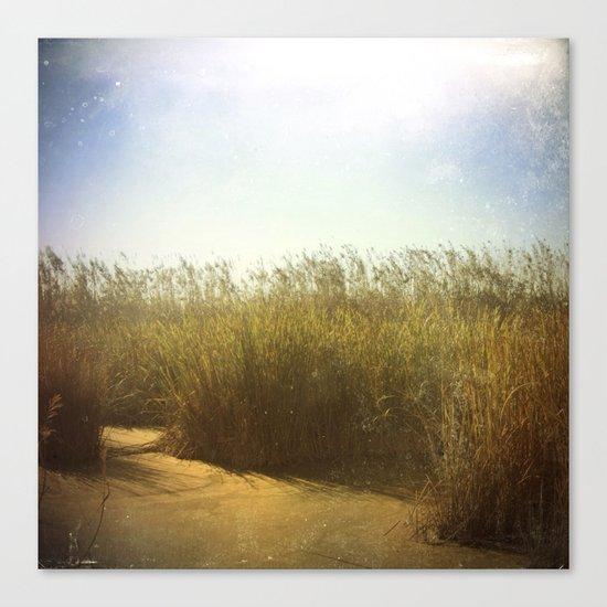 Little Swamp Canvas Print