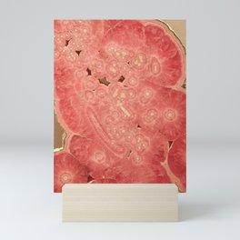 Red Rock Abstract Mini Art Print