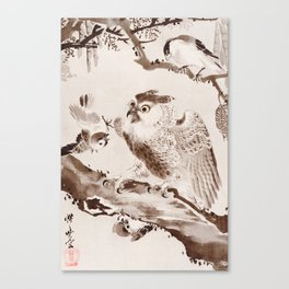 Owl Mocked by Small Birds Canvas Print
