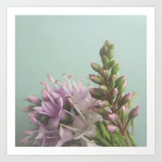 Floral Variations No. 9 Art Print