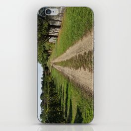 On the way to home, Winery landscape iPhone Skin