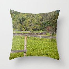 Broken fence in a rural area Throw Pillow