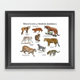 Wildcats of North America Framed Art Print