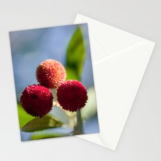 Strawberry tree fruits 8697 Stationery Cards
