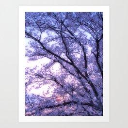 Periwinkle Lavender Flower Tree Art Print